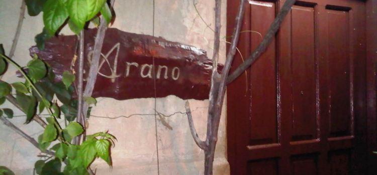 Arano's