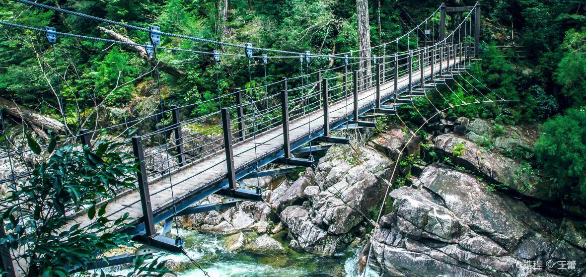 แผนที่สถานที่ท่องเที่ยวยากุชิมะ - ไกด์บุ๊คKumage District -Trip.com