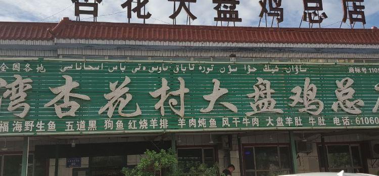 杏花村大盤雞總店3