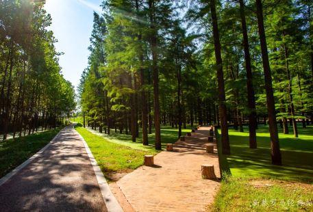 北湖生態園