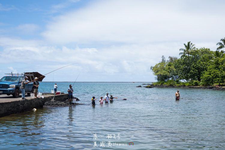 Coconut Island3