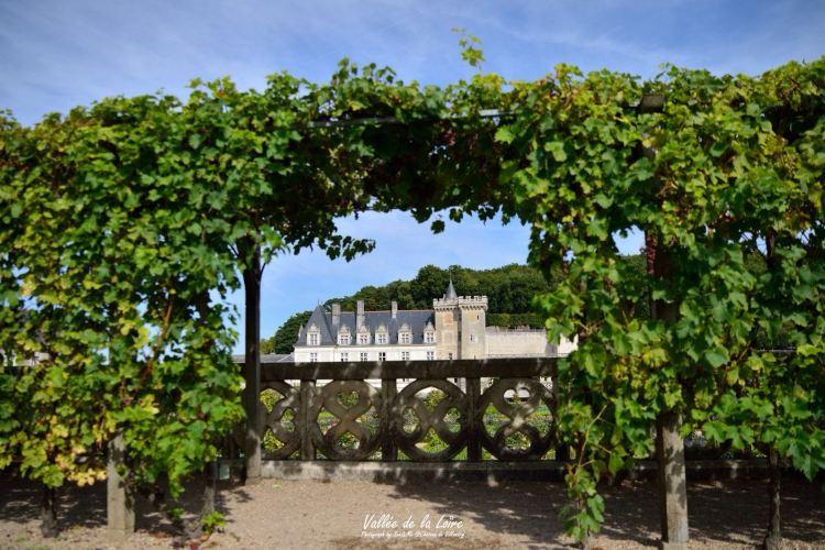 維朗德里城堡及花園2