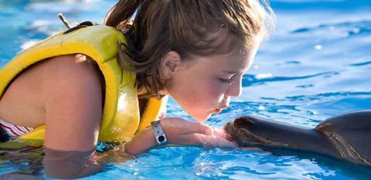 Dolphins Bay Phuket2