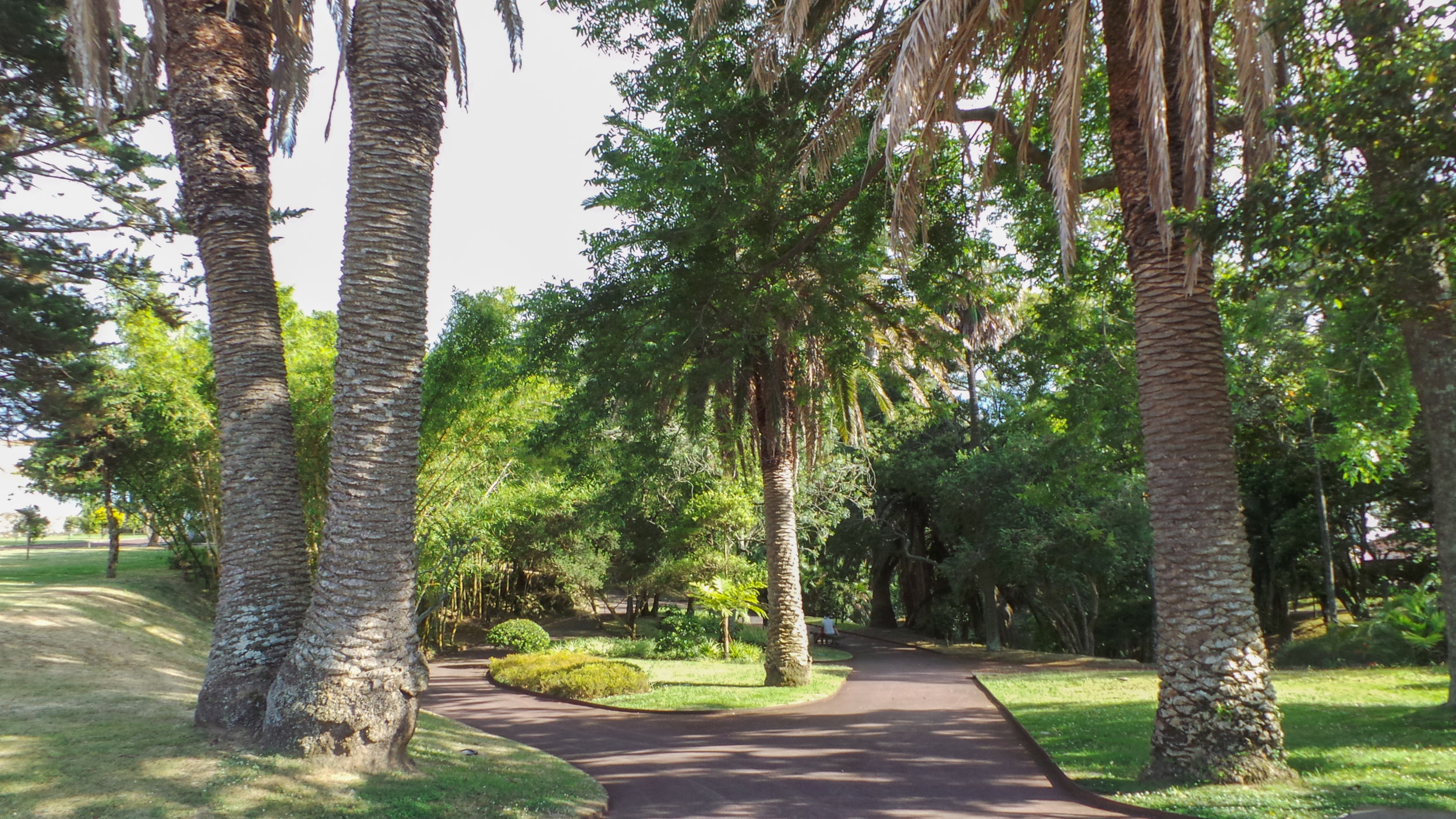 Parque Botánico Municipal