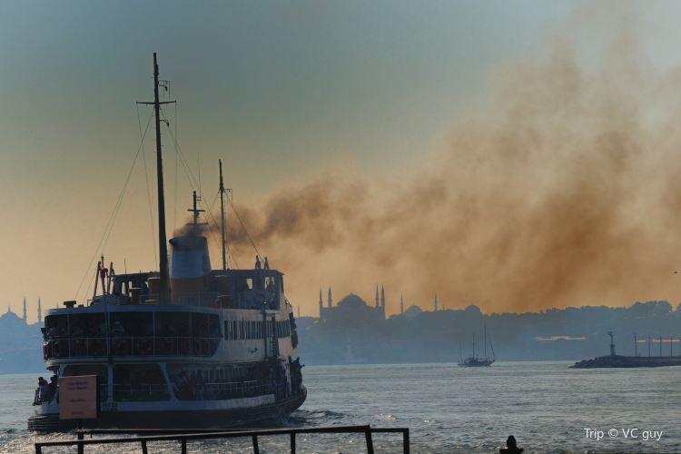 Ferries1