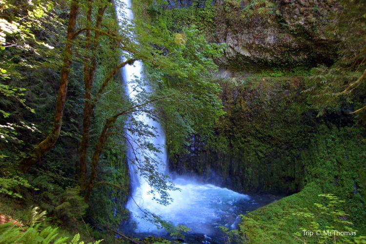 Green River Trail3