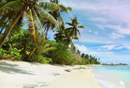 Anse Marie-Louise Beach