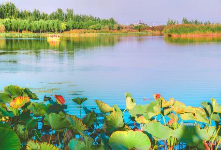 Yinchuan Mingcui National Wetland Park