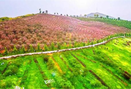 Yihuiyuan Dujia Sceneic Area