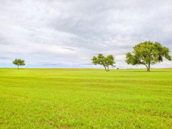 珠日河草原旅遊區