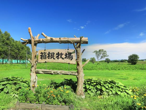 Hokkaido Hakone Farm