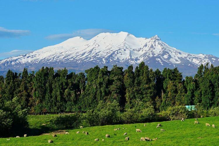 Tongariro National Park3