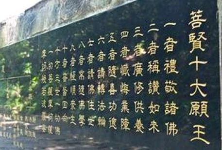 Tucheng Tung Blossom Trail, Tung Blossom Park