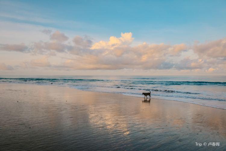 Mai Khao Beach1