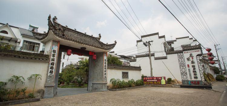 Xi Xiang Cu Cai Guan2