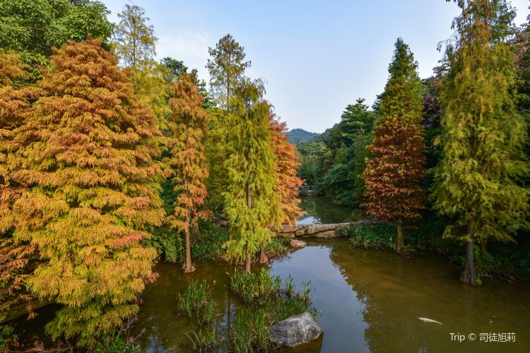 The Yunxi Ecological Park2