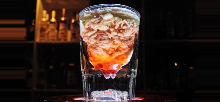 The Ice Bar V2o2