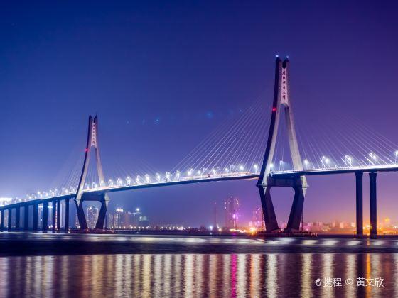 Zhanjiang Bay Bridge
