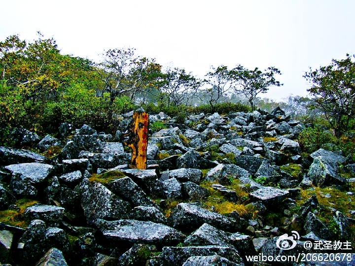 Heilongjiang Fenghuangshan National Nature Reserve