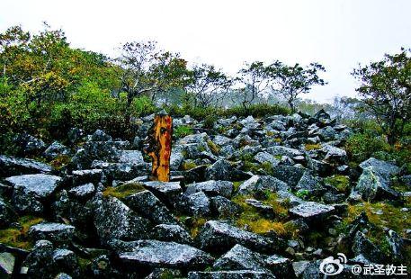 Heilongjiang Fenghuangshan National Nature Reserve