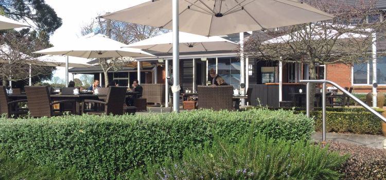 Zealong Camellia Tea House2