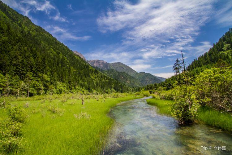 Arrow Bamboo Lake2