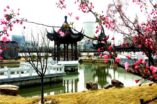 洋河酒廠(泗陽基地)工業旅遊區4