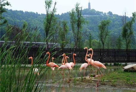 상방산 삼림 동물원