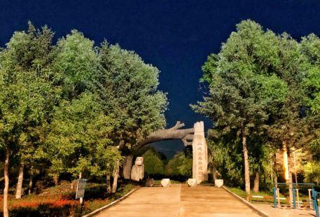 Erlong Mountain Forest Botanical Garden