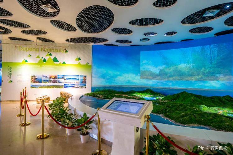 Dapeng Geopark Museum2