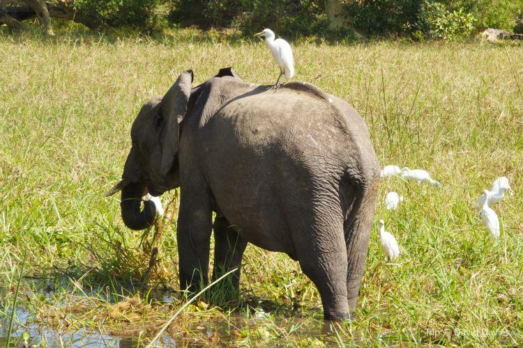 Majete National Park
