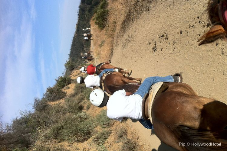 Sunset Ranch Hollywood1