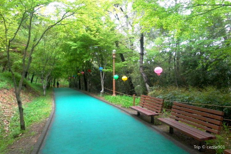 5·18 기념공원1