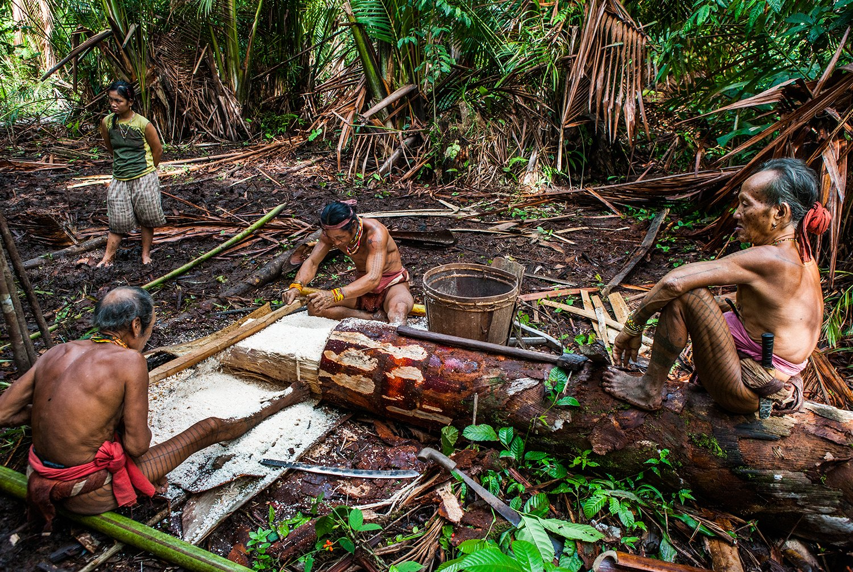 Mentawai Tribe Tour
