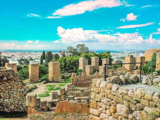 Carthaginian Ruins