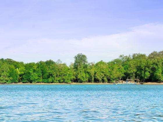 Kuching Wetlands National Park