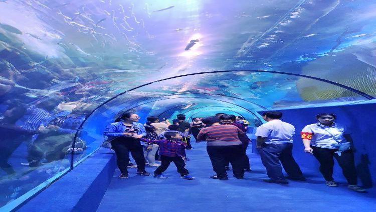 Handan Ocean Park1