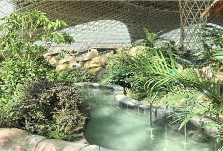 West China Dinosaur Water Park Indoor Spa