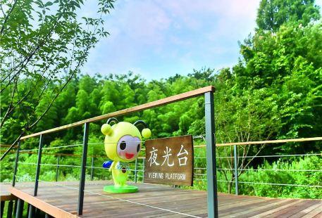 Meijie Yinghuochong Ecology Park