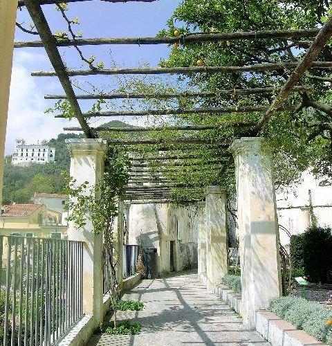 Minerva's Garden4