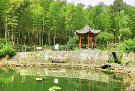 龍塢鎮西山森林公園