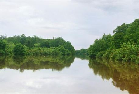 Binsuluk river cruise