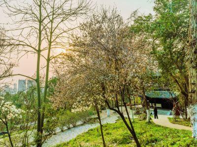赭山風景區
