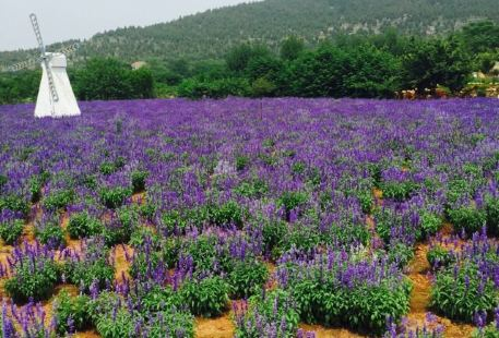 紫海藍山文化創意園