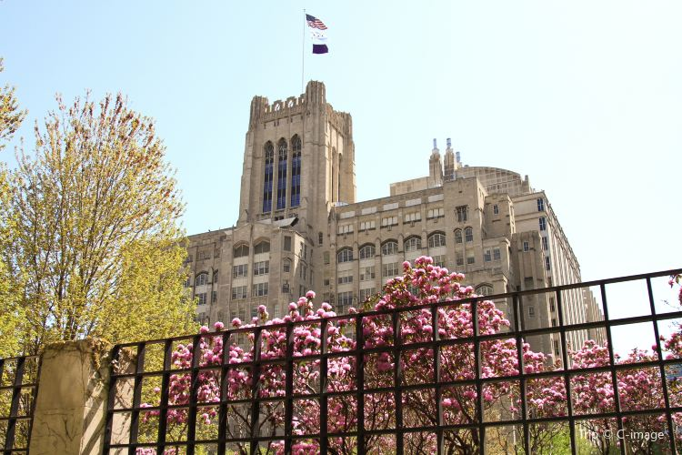 Northwestern University1