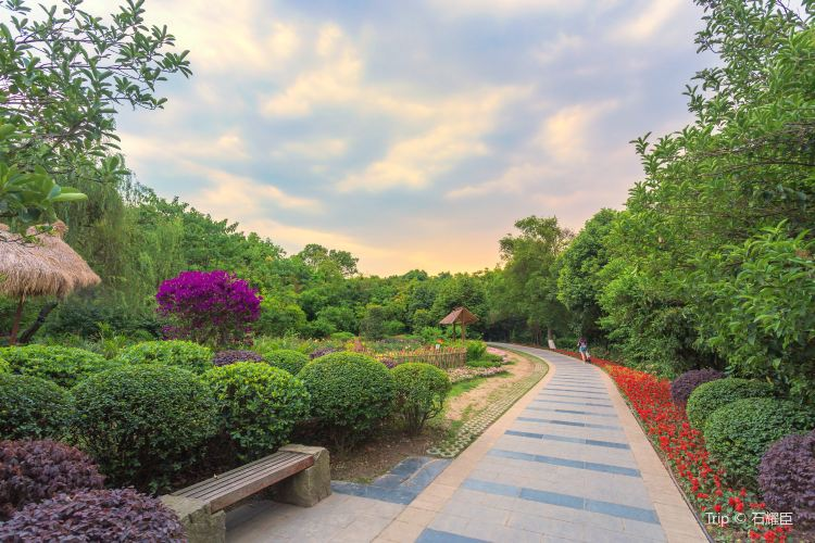 청두 식물원4