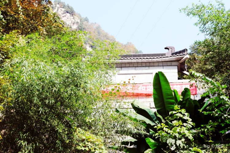 浄業寺(西南門)3