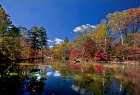 Jilin Yanbian Xianfeng National Forest Park