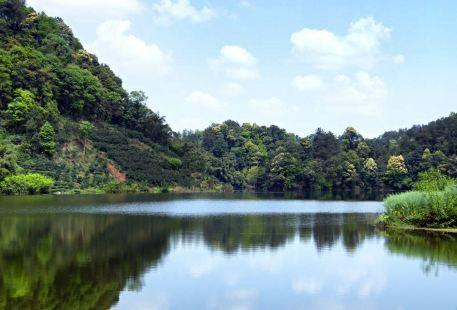 Pujiang Chaoyanghu Bailu Ecological Nature Reserve
