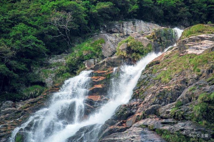 大川瀑布1